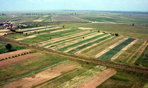 agricultura-alba